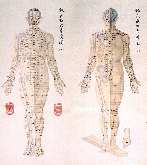Acupuncture – Natural Health Tips, Blog